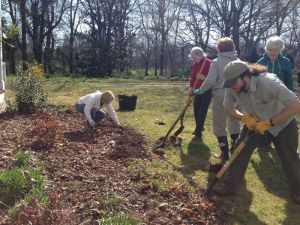 Volunteers working the vegetable garden on a beautiful fall day.