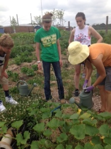 Liz Meeks teaches volunteers how to properly water plants at the BELL Garden.