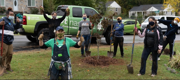 HCA volunteers help plant trees during HCA's Community Days: A Month of Service initiative